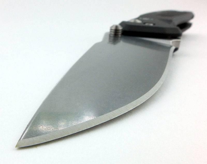 photo 21 Pallas blade grind P1190276.jpg